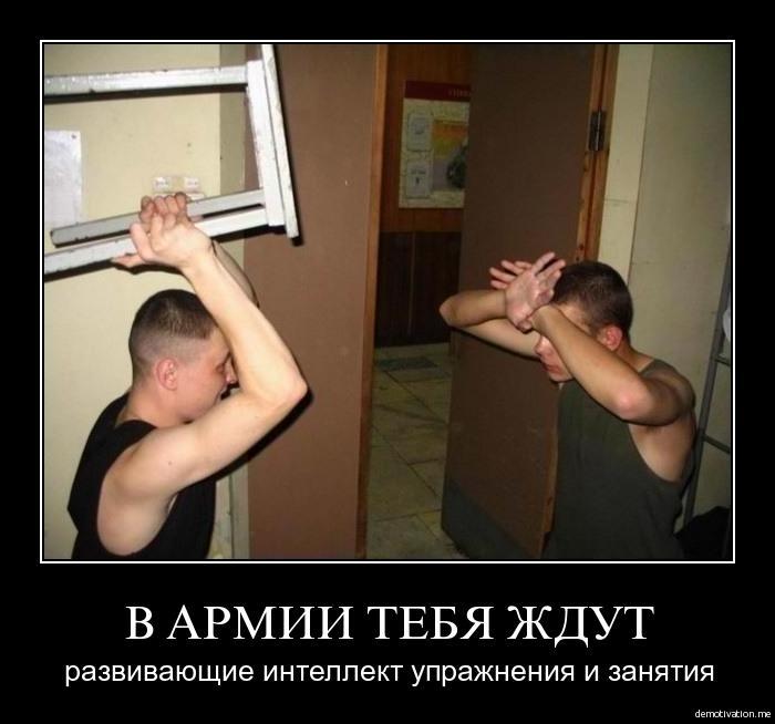 http://s2.uploads.ru/Tiro5.jpg