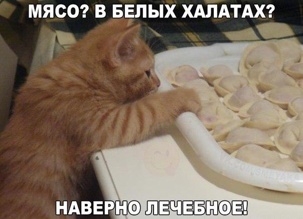 http://s2.uploads.ru/U4oMq.jpg