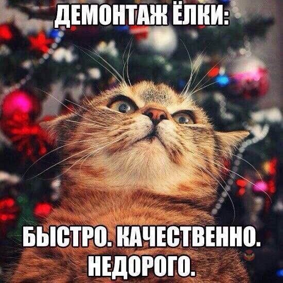 http://s2.uploads.ru/UYIv0.jpg