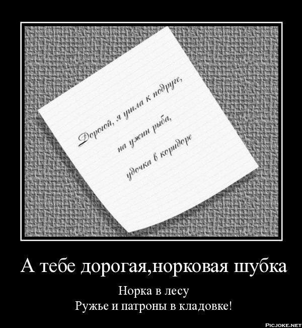 http://s2.uploads.ru/VuLol.jpg