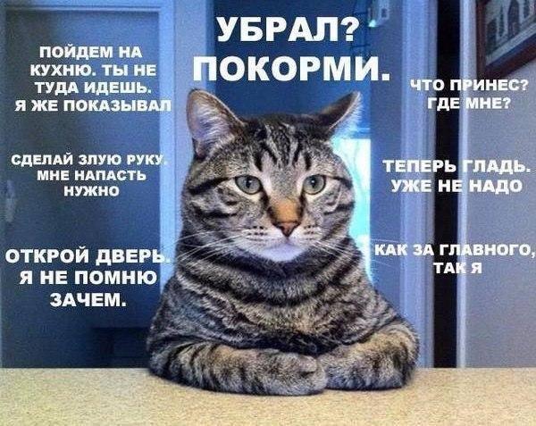 http://s2.uploads.ru/W2cxh.jpg