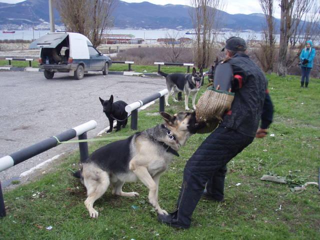 http://s2.uploads.ru/WJLqA.jpg