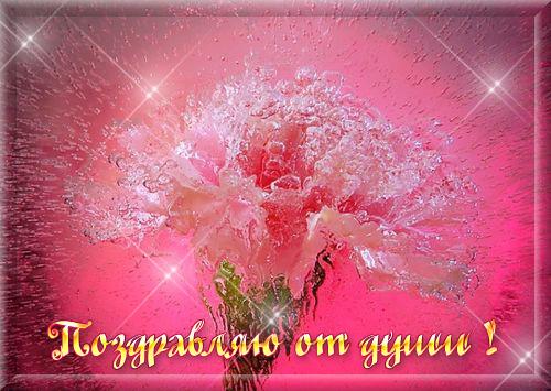 http://s2.uploads.ru/WYtiB.jpg