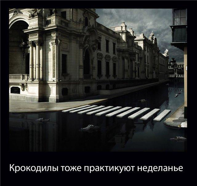 http://s2.uploads.ru/Wh9Vi.jpg