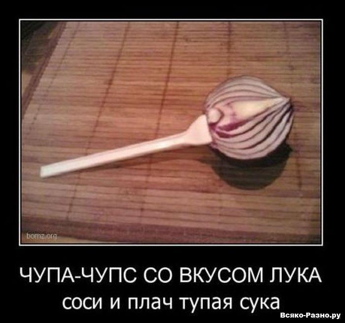 http://s2.uploads.ru/WjksM.jpg
