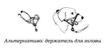 http://s2.uploads.ru/WtcFf.jpg