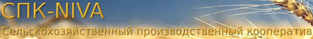 Мини-курс  Екатерины Тереховой для женщин XToUB