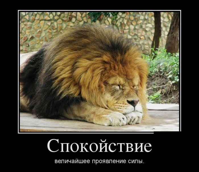 http://s2.uploads.ru/Xpfdl.jpg