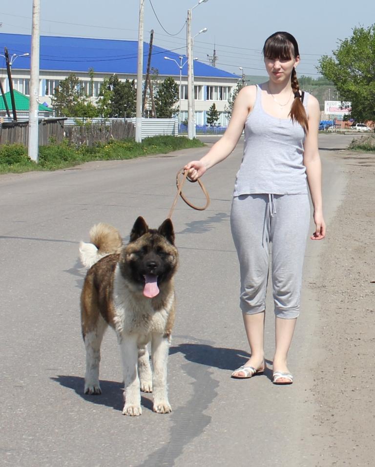http://s2.uploads.ru/YcMCA.jpg