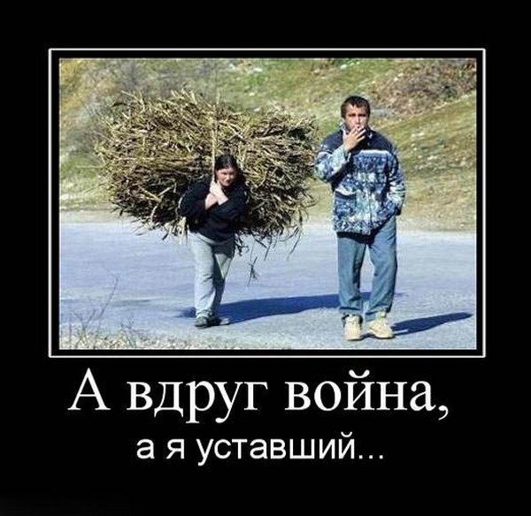 http://s2.uploads.ru/ZkOiI.jpg