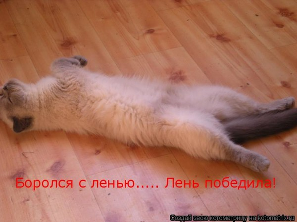 http://s2.uploads.ru/a5cqF.jpg