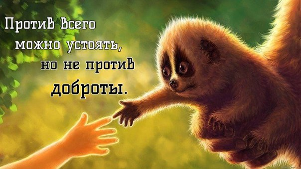 http://s2.uploads.ru/aq80b.jpg