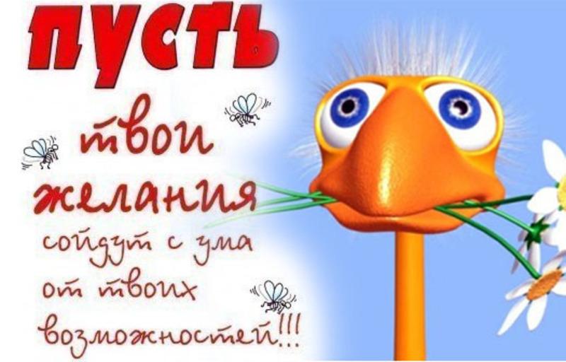 http://s2.uploads.ru/aze9V.jpg