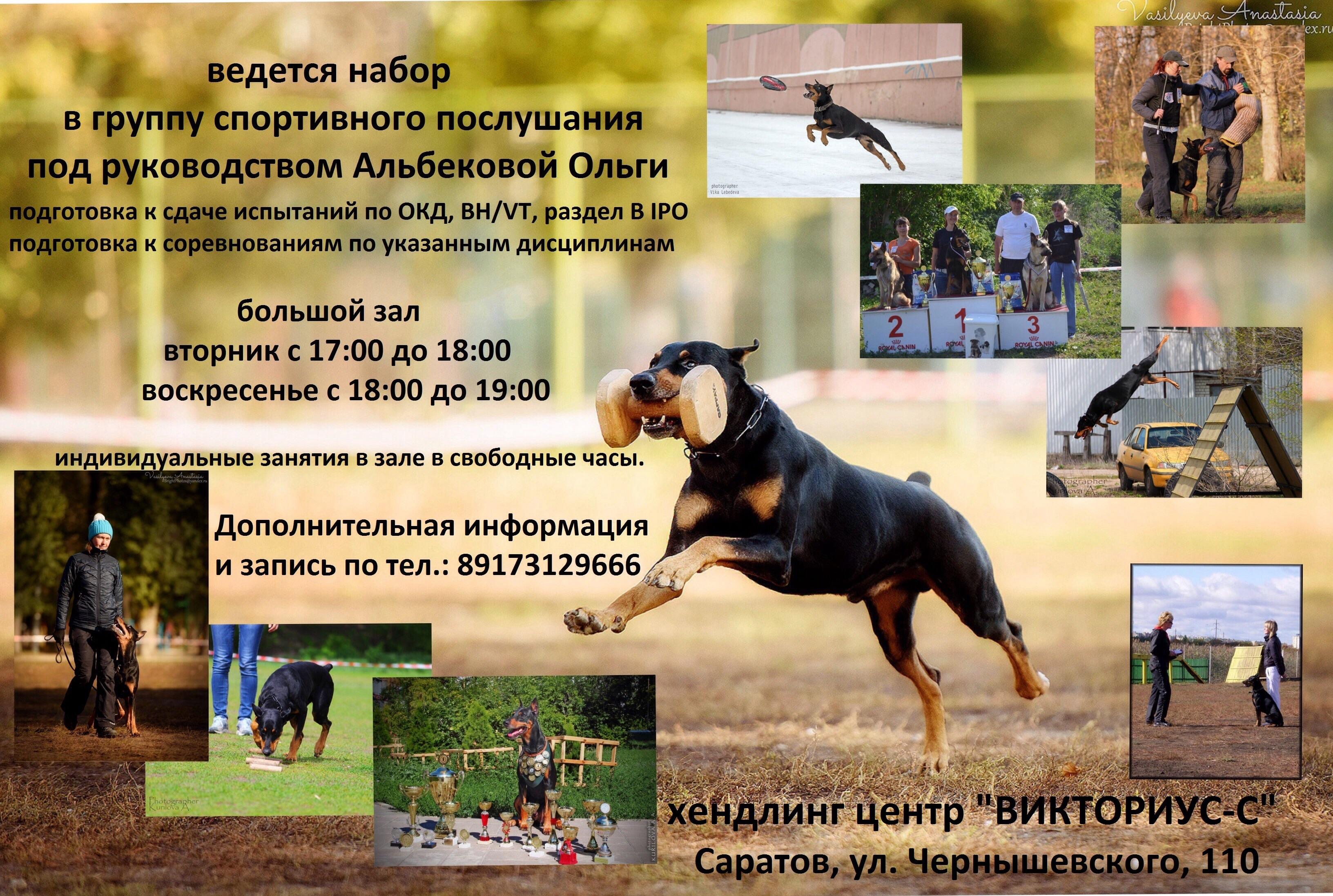 http://s2.uploads.ru/bCdyn.jpg