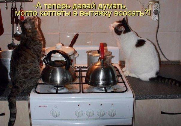 http://s2.uploads.ru/boaOP.jpg