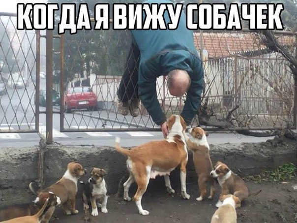 http://s2.uploads.ru/brJsP.jpg