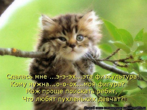 http://s2.uploads.ru/c4P2C.jpg