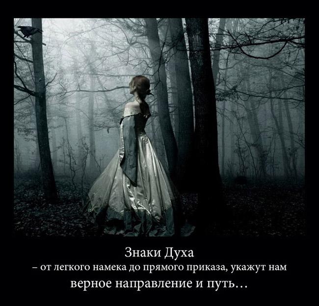http://s2.uploads.ru/cLTsN.jpg