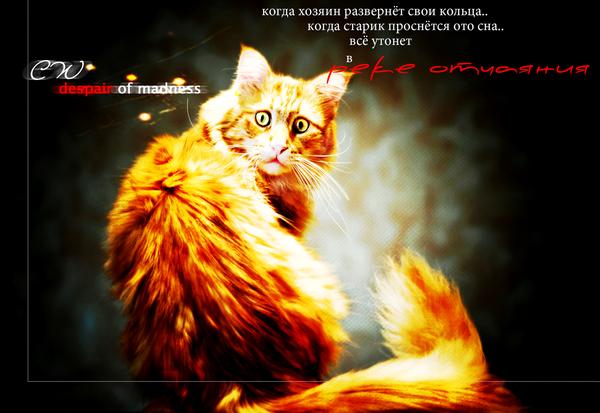 http://s2.uploads.ru/cTv52.png