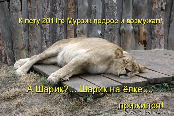 http://s2.uploads.ru/ctaYz.jpg