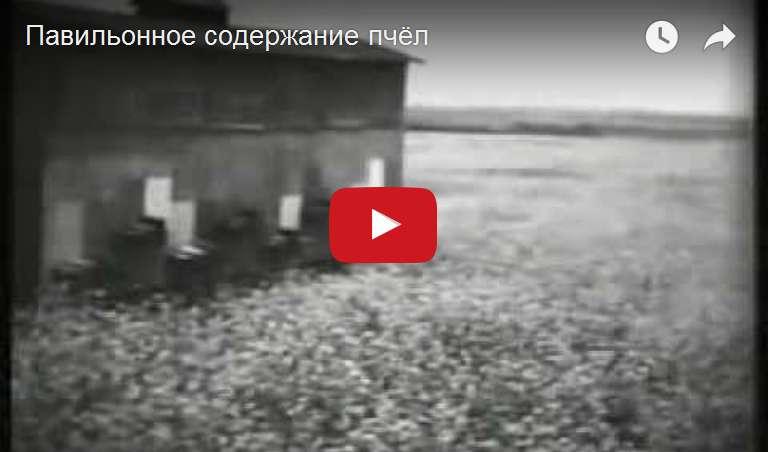 http://s2.uploads.ru/d/szm9M.jpg