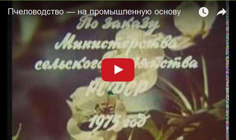 http://s2.uploads.ru/d/udKki.jpg