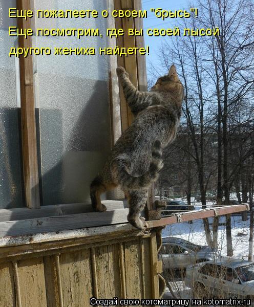 http://s2.uploads.ru/do8ED.jpg