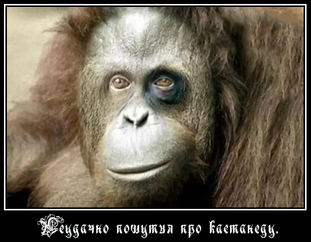 http://s2.uploads.ru/eLCbk.jpg