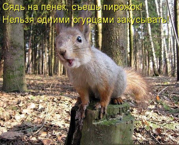 http://s2.uploads.ru/eSKCm.jpg