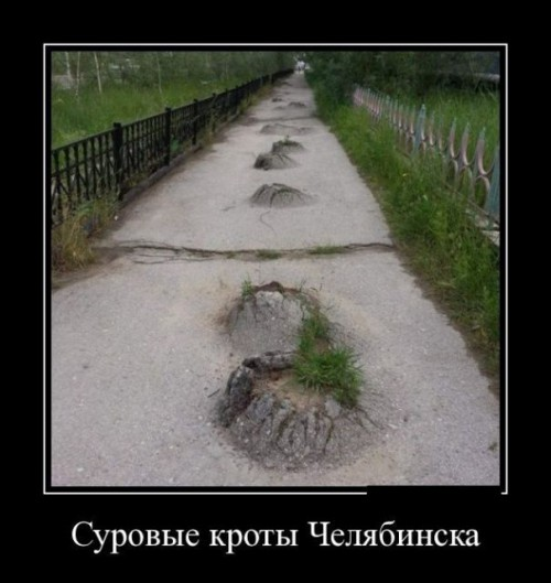 image_stalker_zona_tvorchestva
