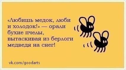 http://s2.uploads.ru/emol8.jpg
