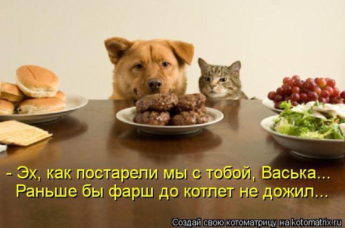 http://s2.uploads.ru/ev08E.jpg