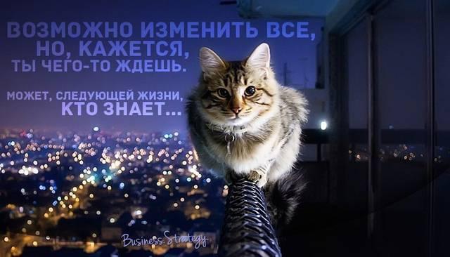 http://s2.uploads.ru/faCUF.jpg