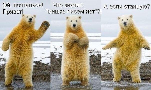 http://s2.uploads.ru/fhrtW.jpg