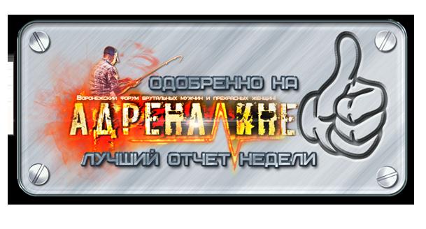 http://s2.uploads.ru/g1jO3.png