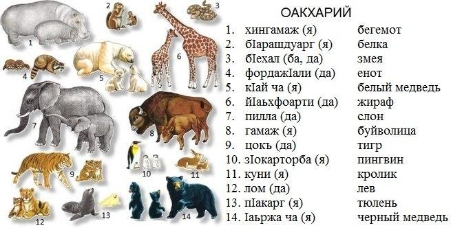 http://s2.uploads.ru/gwKsx.jpg