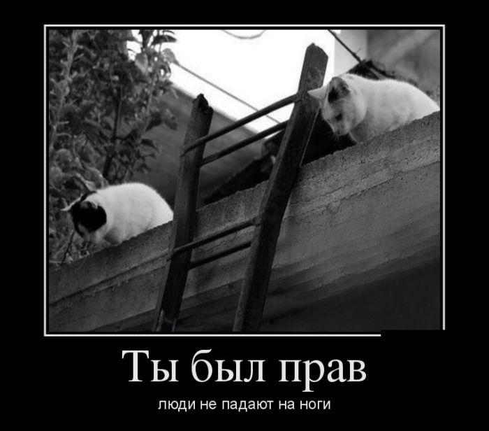 http://s2.uploads.ru/i/VDfbJ.jpg