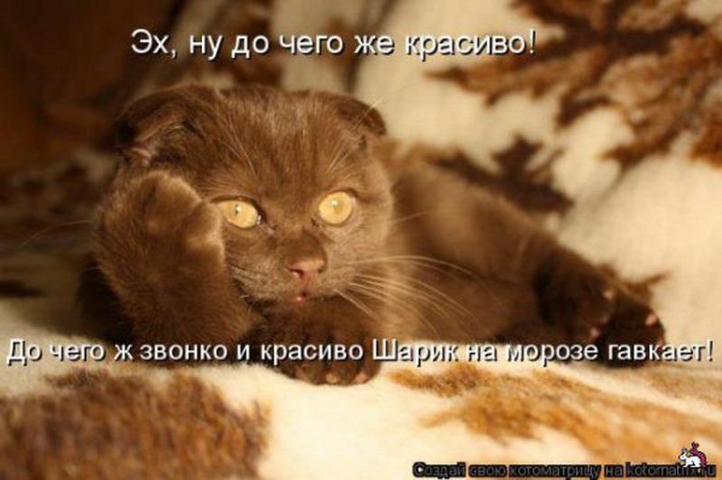http://s2.uploads.ru/i3JLS.jpg