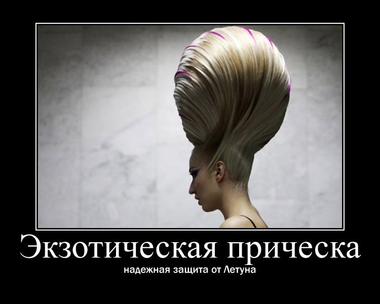 http://s2.uploads.ru/iLY0m.jpg