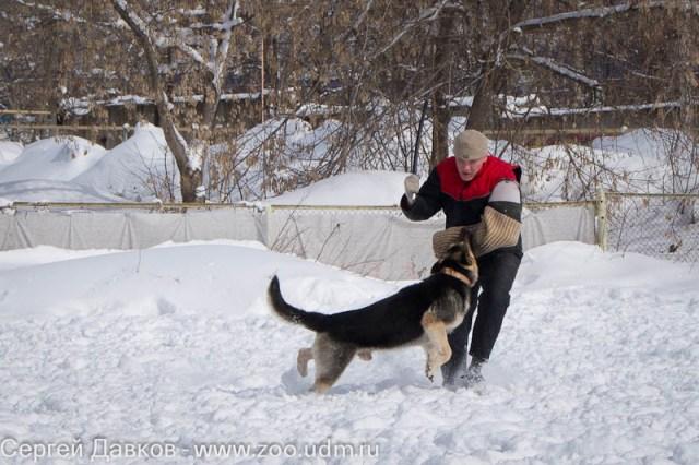http://s2.uploads.ru/ik4ln.jpg