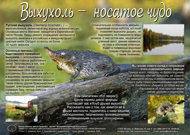 http://s2.uploads.ru/imFQd.jpg