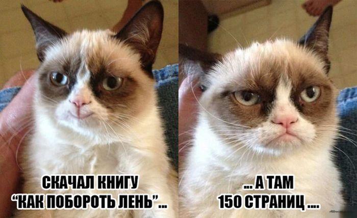 http://s2.uploads.ru/j8iyX.jpg