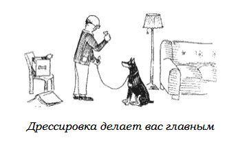 http://s2.uploads.ru/jC7ZV.jpg