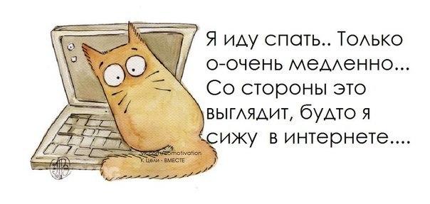 http://s2.uploads.ru/k18vV.jpg
