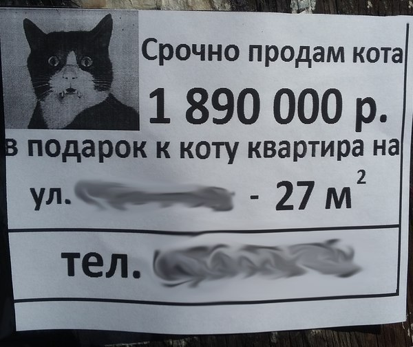 http://s2.uploads.ru/kEL30.jpg