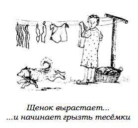 http://s2.uploads.ru/kwg3I.jpg