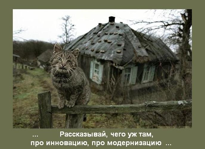 http://s2.uploads.ru/lAmSa.jpg