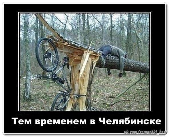 http://s2.uploads.ru/lV10y.jpg