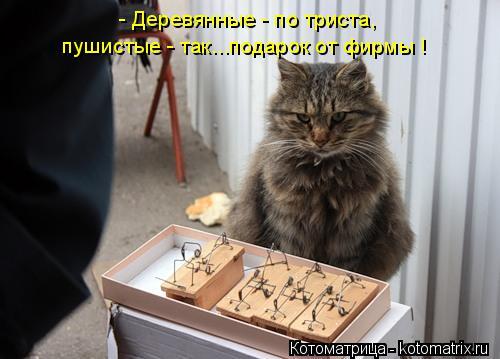 http://s2.uploads.ru/mG69L.jpg