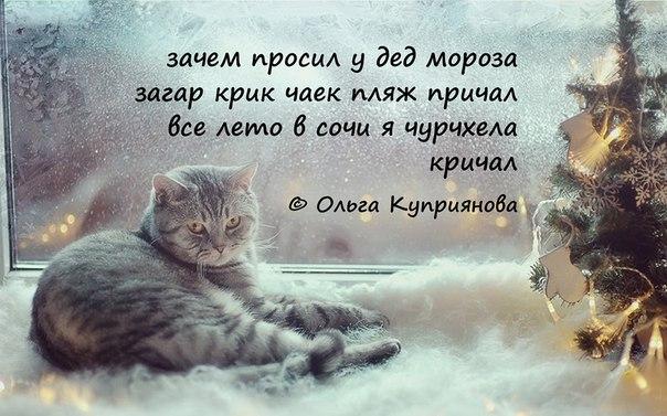 http://s2.uploads.ru/mfPj4.jpg
